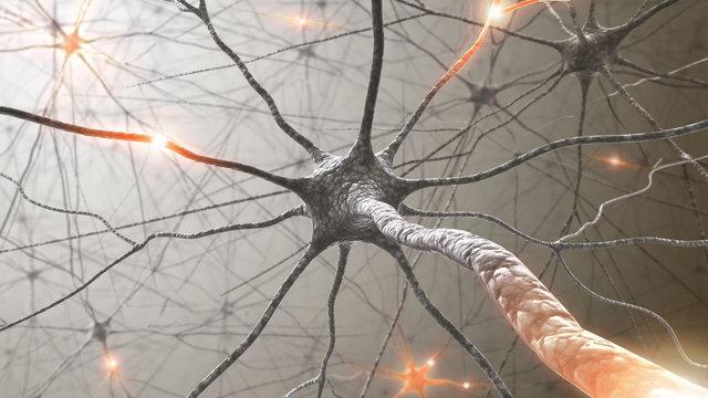 mindfulness a twoj mozg